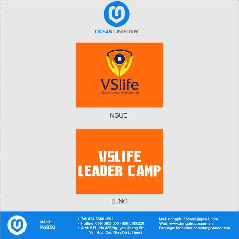 Họa tiết áo nhóm Công ty cổ phần quốc tế VSLIFE