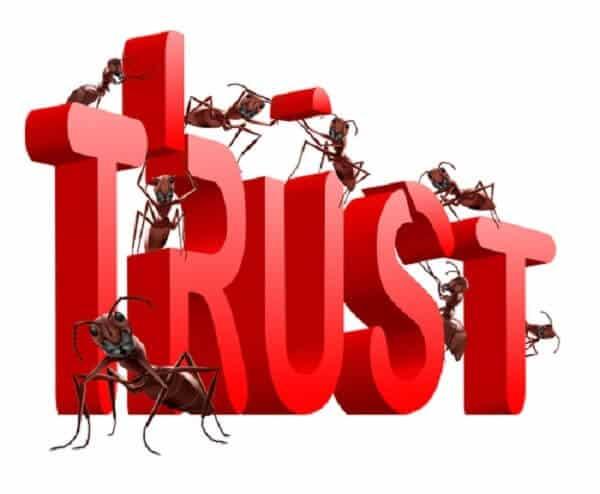 Độ uy tín cao được nhiều khách hàng tin tưởng